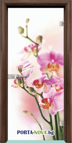 Стъклена интериорна врата, Print G 13-2, каса Бяла във Варна