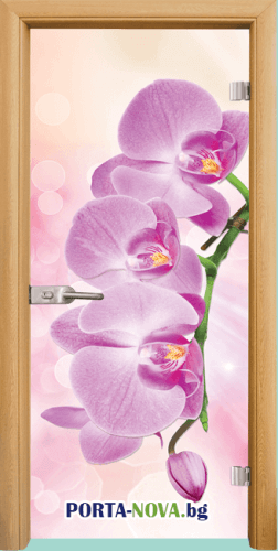 Стъклена интериорна врата, Print G 13-3 Pink, каса Светъл дъб във Варна