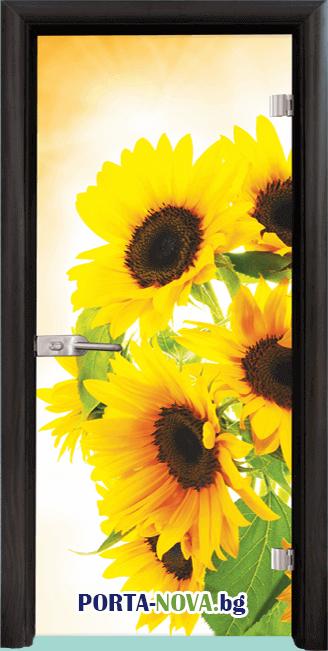 Стъклена интериорна врата, Print G 13-4 във Варна