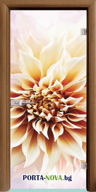 Стъклена интериорна врата, Print G 13-5 във Варна