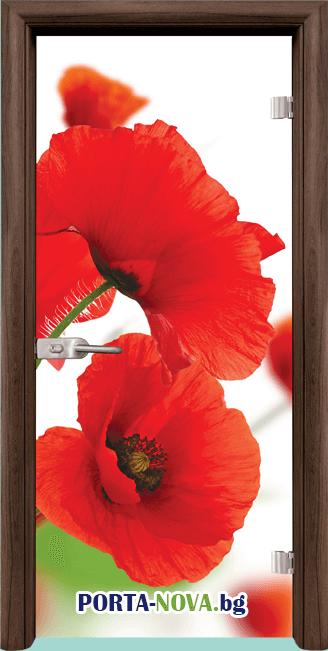 Стъклена интериорна врата, Print G 13-8, каса Бяла във Варна